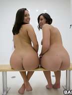 We brought in two giant asses